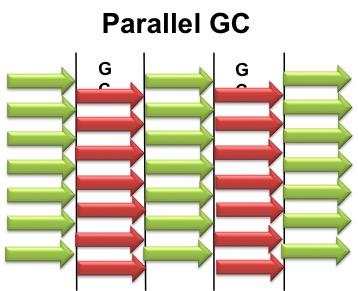 ParallelGC